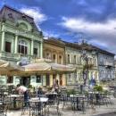 Organic Balkans and fair trade