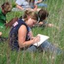 Environmental Education and Sustainable Development
