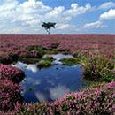 Sustainable Tourism: Peak District National Park